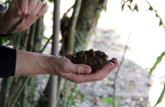 BC: Secretaria do Meio Ambiente produzirá alimentos orgânicos