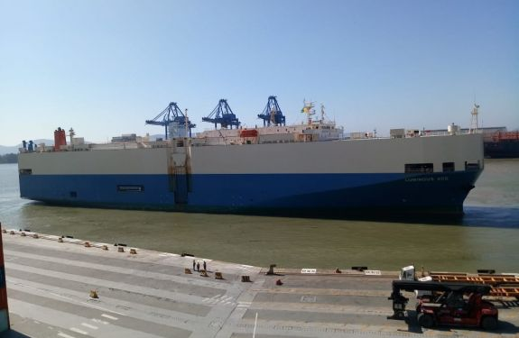 Berço 3 do Porto de Itajaí recebeu 1020 veículos importados