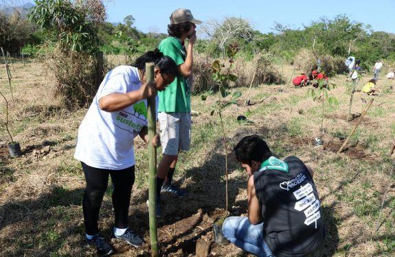 Camboriú: Fucam promove plantio de 550 mudas de plantas nativas às margens do Rio Camboriú