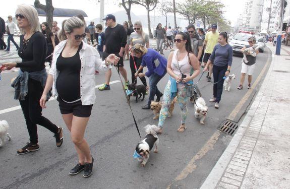 Cerca de 135 cachorros participaram da Cãominhada