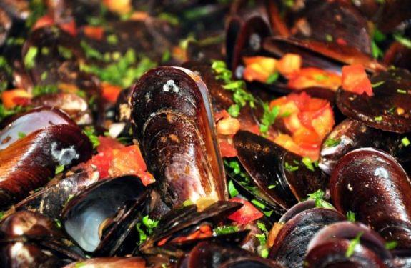 Consumo de moluscos é proibido pela Cidasc