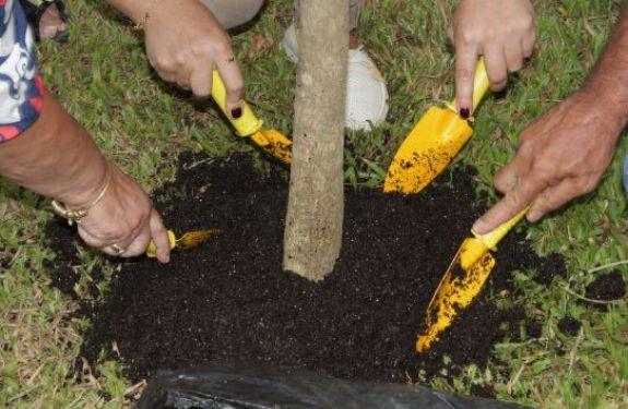 Escola Sustentável inaugurada no bairro Canhanduba