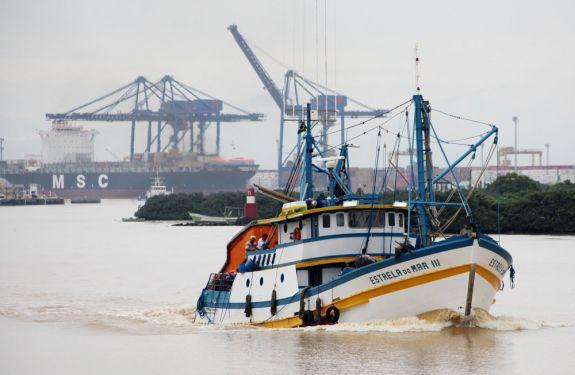 Exportação de pescado para a União Europeia é suspensa