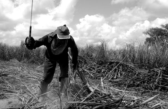 Governo publica nova portaria sobre trabalho escravo