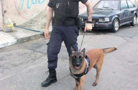 Guarda Municipal inicia curso para condução de cães