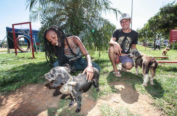 Itajaí: 1ª Semana do Bem-Estar Animal conscientizará sobre responsabilidade com animais