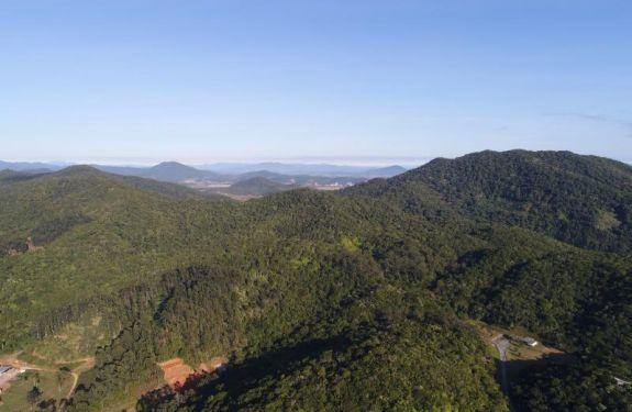 Itajaí elabora Plano Municipal de Conservação e Recuperação da Mata Atlântica