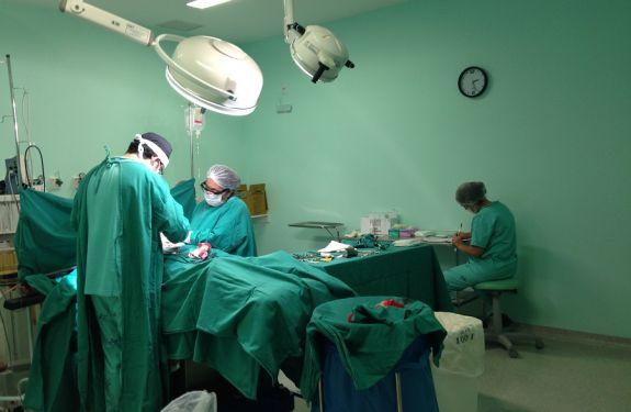 Maio registrou recorde de nascimentos no Hospital Municipal Ruth Cardoso