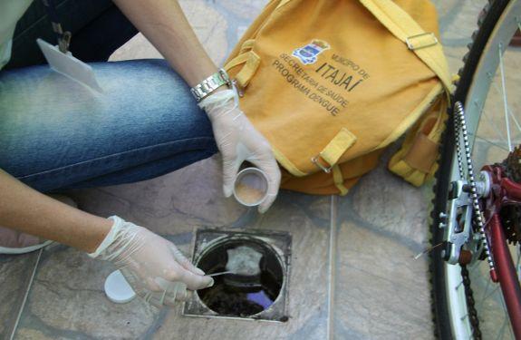 Município de Itajaí registra 213 casos de dengue em 2020