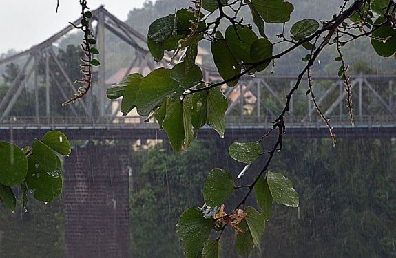 Nível do Rio Itajaí-Açu preocupa Blumenau