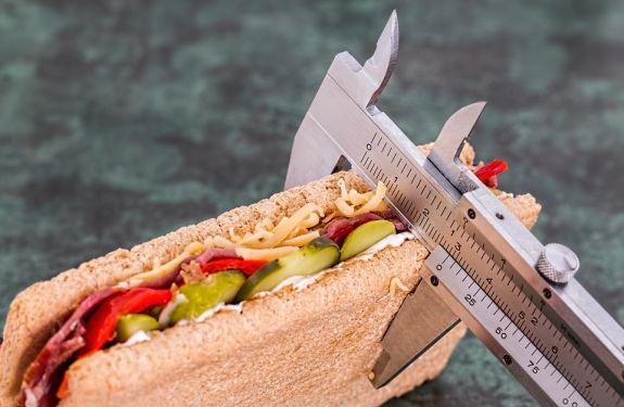 Obesidade é eleita como um dos principais problemas da humanidade