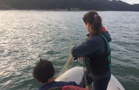 Operação fiscaliza pesca irregular em Itapema