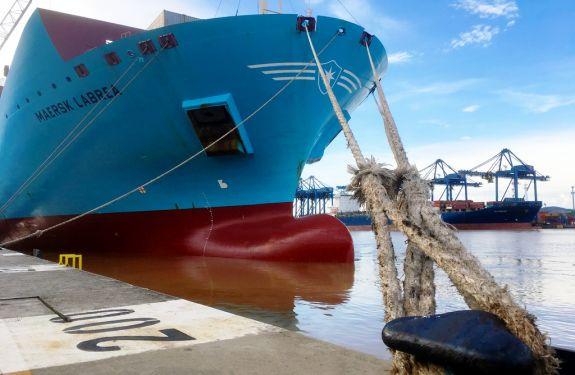 Porto de Itajaí cresce 133% no mês de janeiro