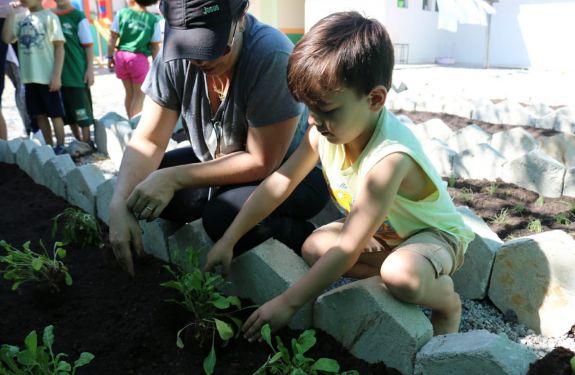 Programa Tatu implanta hortas nos CEIs de Camboriú