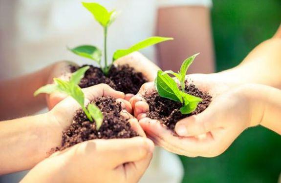 Univali recebe pesquisadores de quatro países para debate sobre direito e sustentabilidade