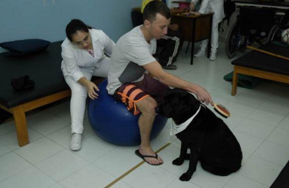 Univali sedia Seminário Nacional de Terapia Assistida por Cães
