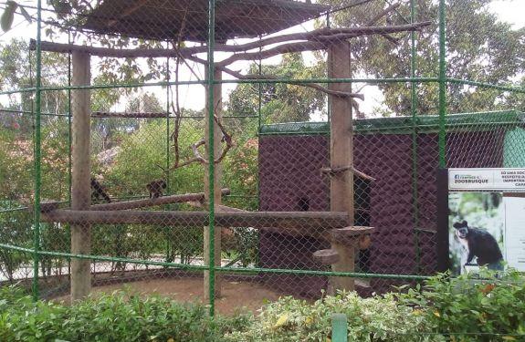 Zoobotânico de Brusque recebe melhorias