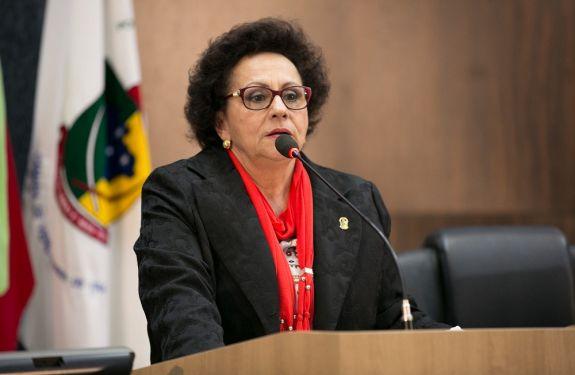 Dulce Amaral questiona contrato de prestação de serviços de monitores em transporte escolar