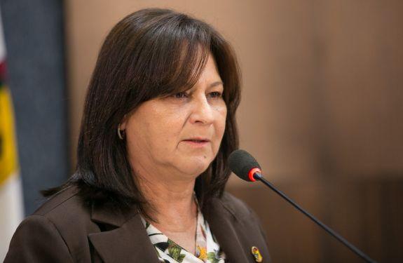 Renata Narcizo pede manutenção de rua no São João