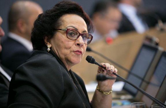 Vereadora Dulce Amaral (PR) pede lombadas eletrônicas...