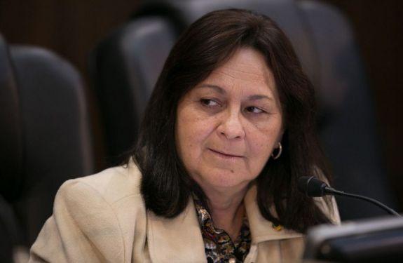 Vereadora Renata Narcizo (SD) questiona sobre animais de rua