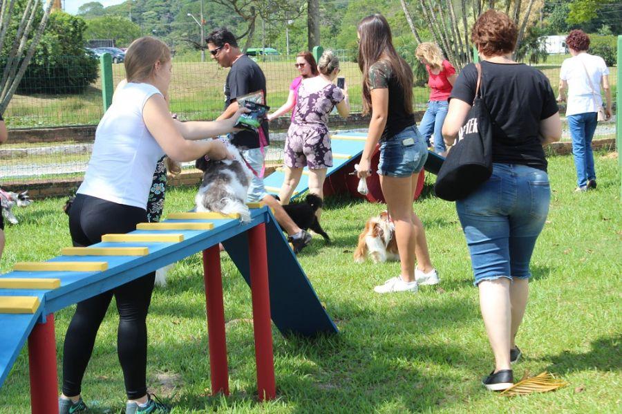 8c6574f121 Primeiro parque para cães de Joinville é inaugurado - Manchete do Vale